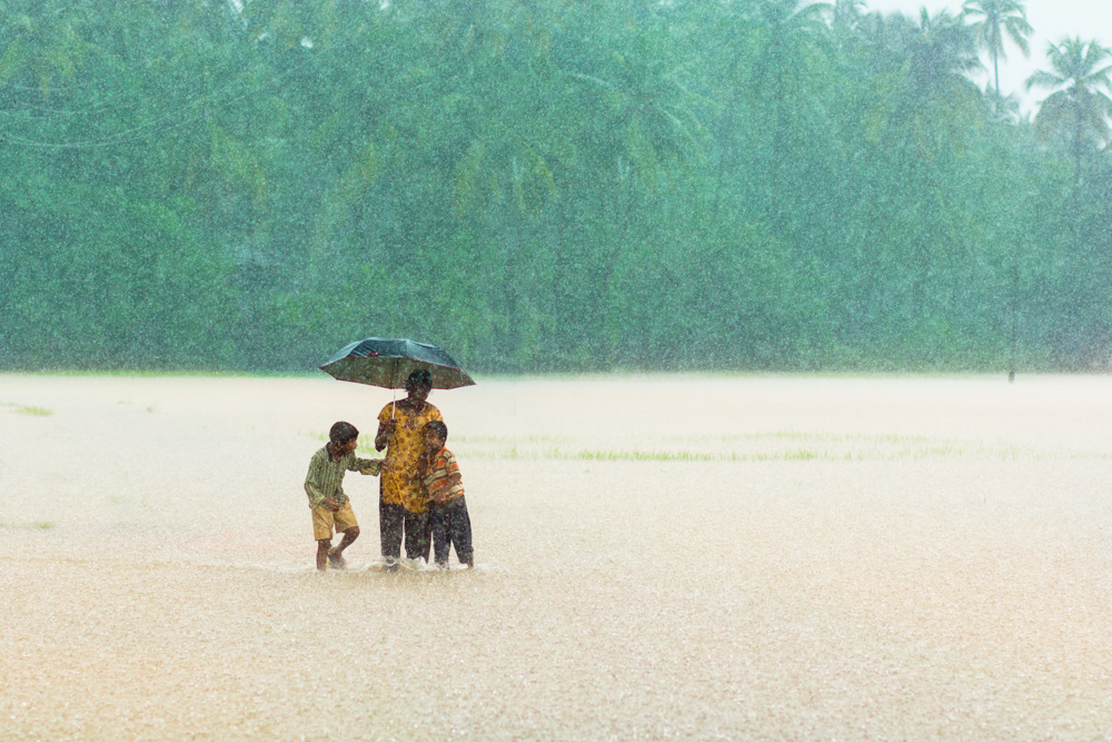 rainy season india essay There are so many seasons in india, but the rainy season is the very beautiful season in india rainy season brings the plenty of water in this season the rain covers the heavy downpour.