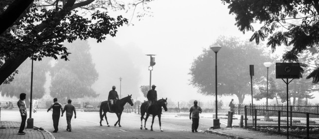 Cubbon Park on a foggy morning